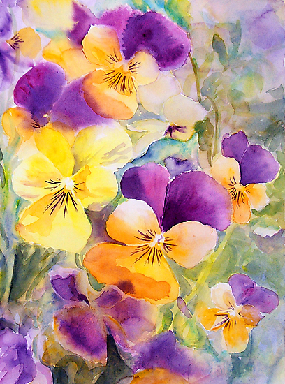 Violas by Ruth S Harris