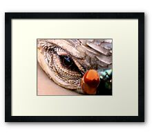 ©Oh Oh You Got Me Out Of Focus IA Framed Print