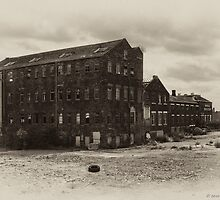 Royal Doulton Factory - Take 3 by Aggpup
