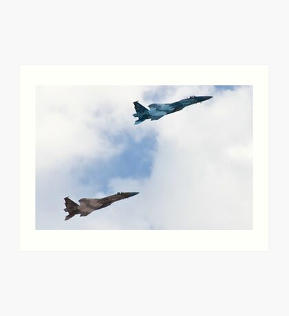 Pair of Eagles, Air Force style Art Print
