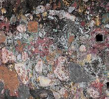 Patina on Wall by Stephen  Dennstedt