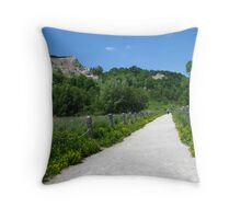 Bluffers Park Throw Pillow