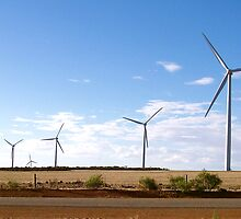 The Wind Farm at Walkaway, Western Australia by eclecticcollect