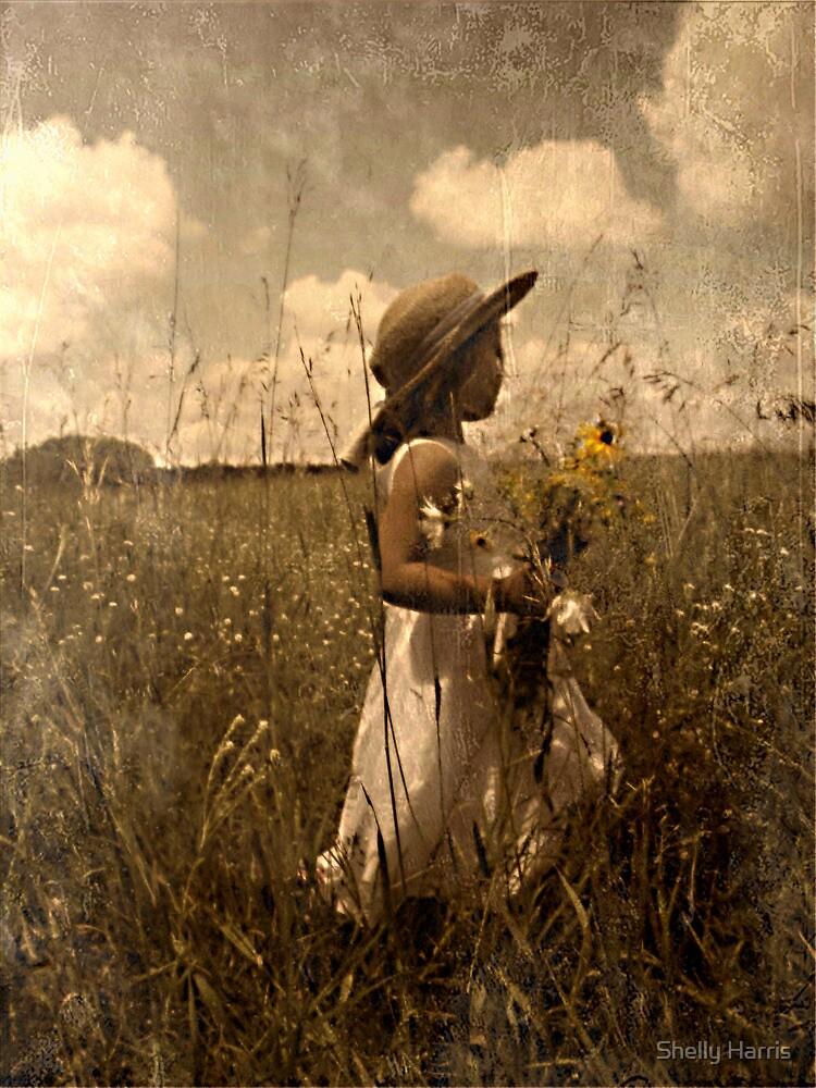 Picking Wild Flowers by Shelly Harris