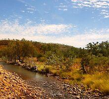 A creek in El Questro by georgieboy98