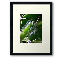 ©NS Green Dreams VA Framed Print