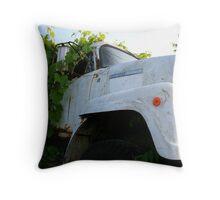 REDREAMING ERADICATE Throw Pillow