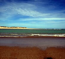 Murray Mouth, Goolwa, S.A. by elphonline