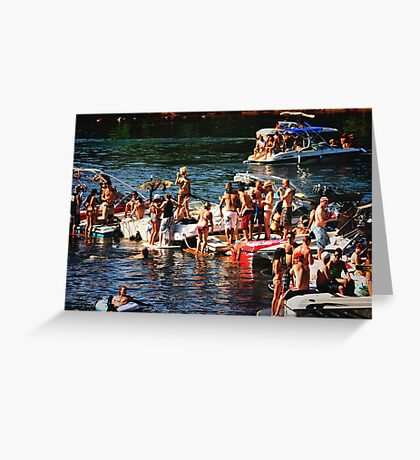 American River Wild Life Greeting Card