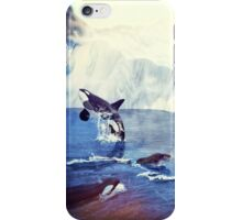 Artic Morning iPhone Case/Skin