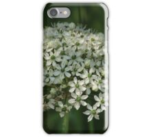 Green & White iPhone Case/Skin