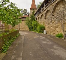 Rothenburg ob der Tauber 15 by Priscilla Turner