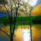 Sunset at Gluek Park by shutterbug2010