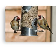 Goldfinch (British) Canvas Print