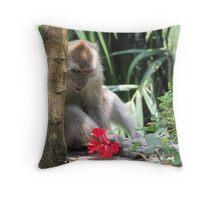 Curious - Lake Gardens, Kuala Lumpur Throw Pillow