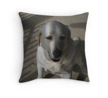Bronte Throw Pillow