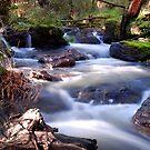 Main Creek by KeepsakesPhotography Michael Rowley