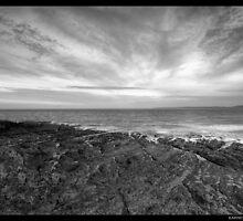 Ocean tug by Robert Karreman