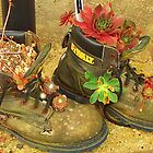 Walking Boots?  Nature has come to them this time! by MichelleRees