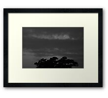 Treetop Clouds Framed Print