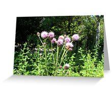 Purple Flowers & Bumble Bee Greeting Card