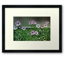 The Earth Laughs in Flowers... Framed Print