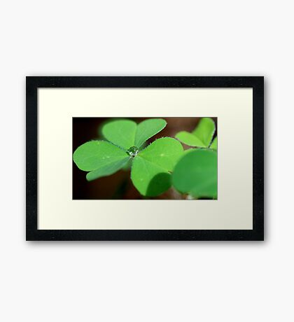 """""""Green with NVE"""" Framed Print"""