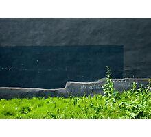 An Abstract Garden Photographic Print