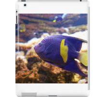 Purple yellowbar angelfish - Pomacanthus maculosus  iPad Case/Skin
