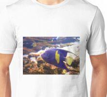 Purple yellowbar angelfish - Pomacanthus maculosus  Unisex T-Shirt