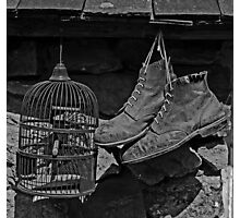 Birdcage and Boots Photographic Print