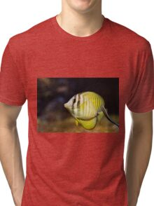 The sailfin tang (Zebrasoma veliferum) Tri-blend T-Shirt