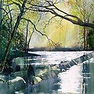 Tarr Steps, Exmoor by Glenn Marshall