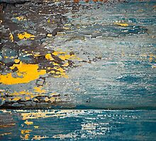 Summer Storm by Susana Weber
