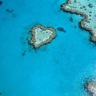 Love the Great Barrier Reef by sharonjr