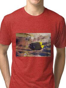 The emperor angelfish - Pomacanthus imperator Tri-blend T-Shirt