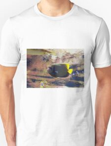 The emperor angelfish - Pomacanthus imperator Unisex T-Shirt