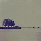 The trees at the end of the pier by Felicitas Molina