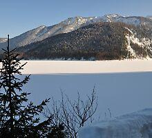 Winter Scene. Sylvenstein. by Daidalos