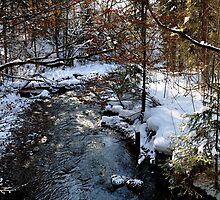 Winter Brook by Daidalos
