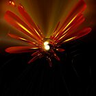 Flower Explosion by Debbie  Jones