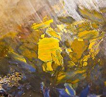African quartz macro by lightwanderer