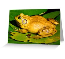 This is my pad!! Greeting Card