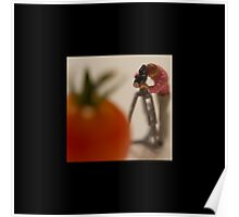 Mini-Creatives: Tomato Series 1 - Photographer Poster