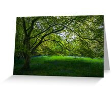 Bluebell Meadow Greeting Card