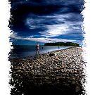 Charles Island by Tim Mannle