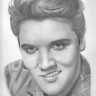 Elvis  by Karen Townsend