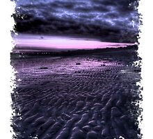 Silver Sands State Park - Sunset by Tim Mannle