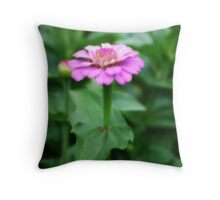 Beautiful Little Lilac Zinnia Throw Pillow