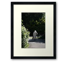 Reality Walks In A Dream Framed Print
